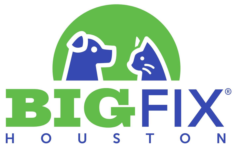 bigfixHouston